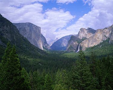 Yosemite Valley carved from from granite by glaciers, from tunnel view, Yosemite National Park, California  -  David Kjaer/ npl