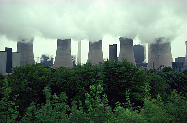 Cooling towers of coal fired power station, Ruhr, Germany  -  Martin Dohrn/ npl