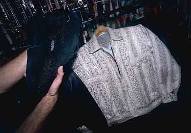 Burmese Python (Python molurus bivittatus) snake skin jacket and Ray fish skin leather for sale, Bangkok, Thailand  -  Jabruson/ npl