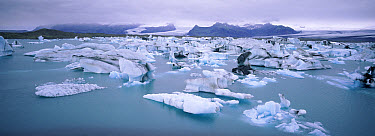 Icebergs breaking up in summer, Vatnajokull Glacier, Iceland  -  Dan Burton/ npl