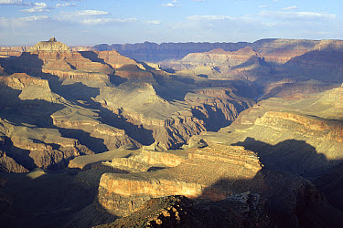 View across Grand Canyon National Park from South Rim, Arizona  -  Nigel Bean/ npl