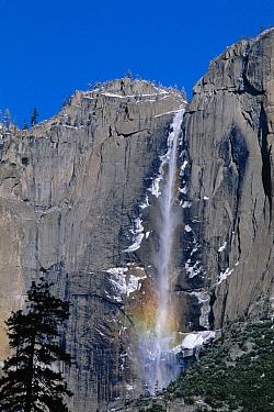 Rainbow below Yosemite Falls in winter, Yosemite National Park, California  -  David Welling/ npl