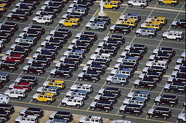 New car lot, Port Elizabeth, South Africa  -  Richard Du Toit