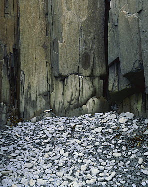Columnar basalt and cobble, Brier Island, Nova Scotia, Canada  -  Scott Leslie