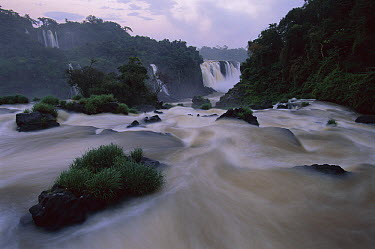 Iguacu Falls, world's largest waterfalls, Brazil and Argentina border  -  Kevin Schafer