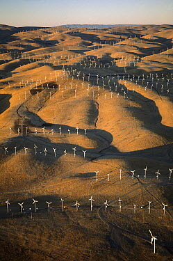 Windmills generating electrical energy, Altamont Pass, California  -  Kevin Schafer