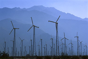 Windmills generating electricity with San Bernadino Mountains in the background, Palm Springs, California  -  Kevin Schafer