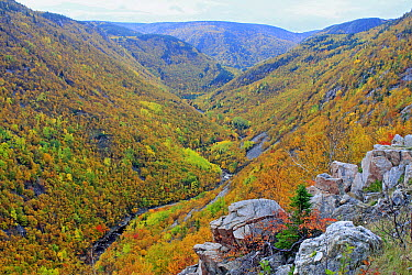 MacKenzie River valley, Cape Breton Highlands National Park, Nova Scotia, Canada  -  Scott Leslie