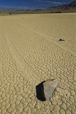 Racetrack Playa with mysterious 'sailing stones', Death Valley National Park, California  -  Kevin Schafer
