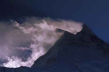 Wind-blown snow on Manaslu (8,156 meters) at dawn, Mansiri Himal region of the Nepalese Himalayas, Nepal  -  Colin Monteath/ Hedgehog House