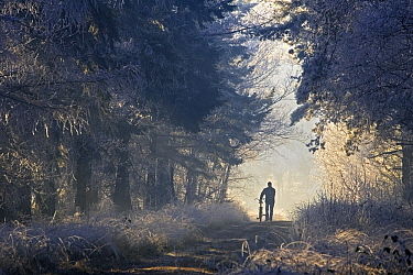 Person walking their bike on path in winter, Valkenswaard, Netherlands  -  Heike Odermatt