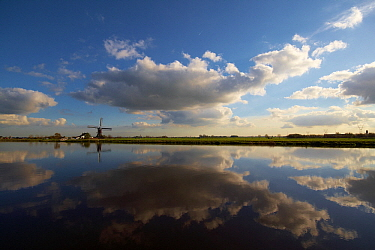 Polder landscape with windmill and cloudy sky reflected in the water, Hoogmade, South Holland, Netherlands  -  Aad Schenk/ NiS