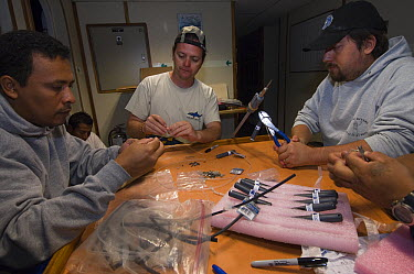 Shark tagging team preparing tags while on board a ship, Wolf Island, Galapagos Islands, Ecuador  -  Pete Oxford