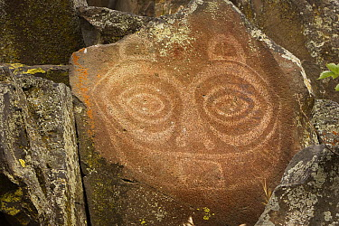 The famous ancient rock art known as Tsagaglalal, located in the Columbia Hills State Park, Washington  -  Michael Durham