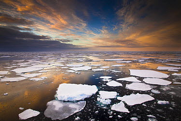 Ice floes at sunset near Mertz Glacier, east Antarctica  -  Colin Monteath/ Hedgehog House