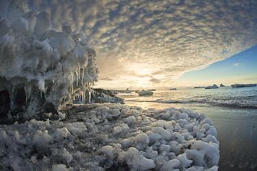 Ice boulders on Ridley Beach, Cape Adare, Ross Sea, Antarctica  -  Colin Monteath/ Hedgehog House