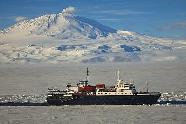 Marina Svetaeva, an ice-strengthened Russian cruise ship in McMurdo Sound sea ice, Ross Sea, Antarctica  -  Colin Monteath/ Hedgehog House