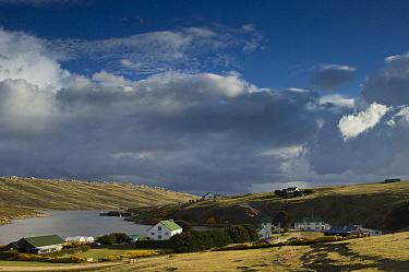 Port Howard settlement, West Falkland, Falkland Islands  -  Pete Oxford