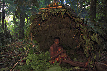 Baka man and child in a Mongolu at a forest hunting campsite, Cameroon  -  Cyril Ruoso