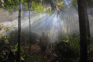 Baka man in a forest hunting camp, Cameroon  -  Cyril Ruoso