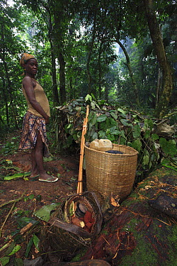 Baka woman with large basket for traveling through the rainforest, Cameroon  -  Cyril Ruoso