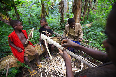 Baka children making toy crossbows, Cameroon  -  Cyril Ruoso