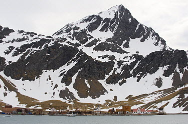 Leith, an abandoned whaling station, South Georgia Island  -  Flip  Nicklin