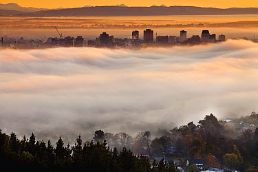 Smog and early winter cloud inversion layer at dawn blankets central city, Christchurch, Canterbury, New Zealand  -  Colin Monteath/ Hedgehog House