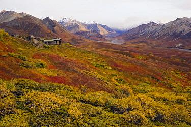 Visitors Center at the base of the Alaska Range, Denali National Park, Alaska  -  Yva Momatiuk & John Eastcott