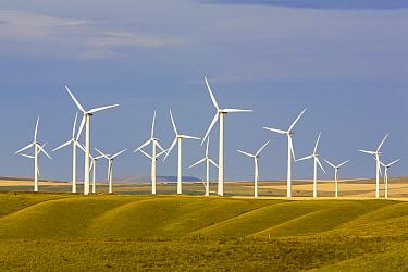 Windmill in fields of traditional farming community, Alberta, Canada  -  Yva Momatiuk & John Eastcott