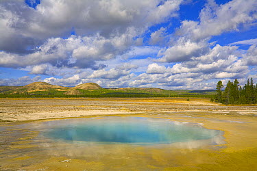 Clouds reflected in the Opal Pool, Midway Geyser Basin, Yellowstone National Park, Wyoming  -  Yva Momatiuk & John Eastcott