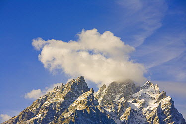Grand Teton peak with cumulus clouds, Grand Teton National Park, Wyoming  -  Yva Momatiuk & John Eastcott