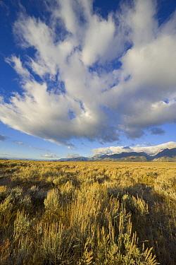 Cumulus and cirrus clouds over sagebrush prairie, Grand Teton National Park, Wyoming  -  Yva Momatiuk & John Eastcott