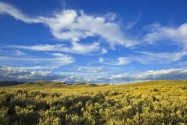 Cumulus and cirrus clouds over sagebrush prairie, Wyoming  -  Yva Momatiuk & John Eastcott