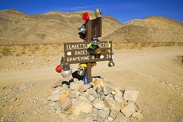 Teakettle Junction post decorated with kettles by tourists, Death Valley National Park, California  -  Yva Momatiuk & John Eastcott