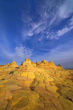 Sandstone formations, Vermilion Cliffs National Monument, Colorado Plateau, Utah  -  Yva Momatiuk & John Eastcott