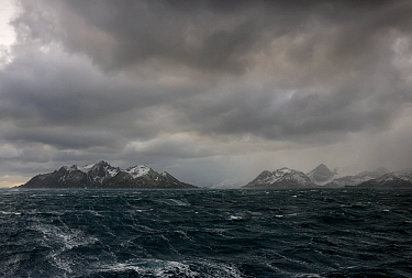 Stormy south Atlantic Ocean with heavy clouds, South Georgia Islands, Antarctica  -  Stephen Belcher
