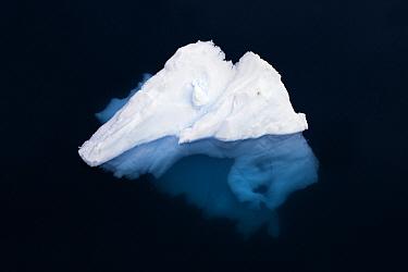 Iceberg, Antarctic Peninsula, Antarctica  -  Stephen Belcher