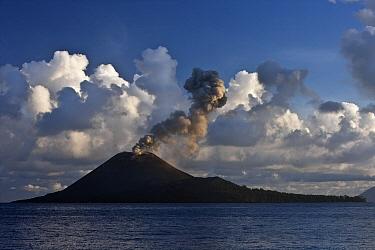 Anak Krakatau erupting in May 2009, Ujung Kulon National Park, Sunda Strait, Indonesia  -  Stephen Belcher