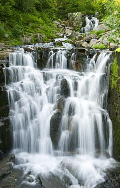 Sunbeam Falls, Mount Rainier National Park, Washington  -  Kevin Schafer