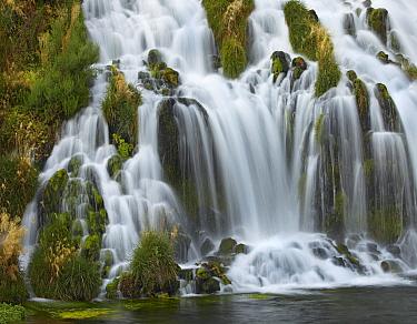 Waterfall, Niagara Springs, Thousand Springs State Park, Idaho  -  Tim Fitzharris