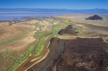 Suguta River and Lake Logipi, a saline alkaline lake, Great Rift Valley, Kenya  -  Richard Du Toit