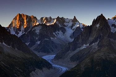 Grandes Jorasses at sunrise, Mont Blanc, France  -  Ingo Arndt