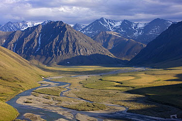 Aichilik River channels and gravel bars on coastal plain, Arctic National Wildlife Refuge, Alaska  -  Ingo Arndt