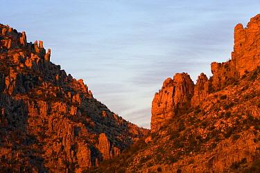 Canyon at sunset, Mount Lemmon, Coronado National Forest, Arizona  -  Ingo Arndt