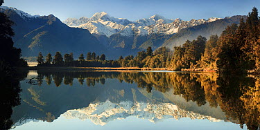 Mount Cook and Mount Tasman reflected in Lake Matheson near Fox Glacier, New Zealand  -  Colin Monteath/ Hedgehog House