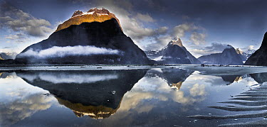 Mitre Peak reflecting in Milford Sound in winter at dawn, Fiordland National Park, New Zealand  -  Colin Monteath/ Hedgehog House