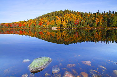 Jigging Cove Lake, Cape Breton Highlands National Park, Nova Scotia, Canada  -  Scott Leslie