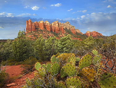 Coffee Pot Rock near Sedona, Arizona  -  Tim Fitzharris