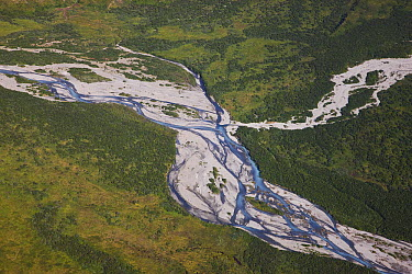 Braided river showing floodplain, channel bars and channels, Katmai, Alaska  -  Theo Allofs